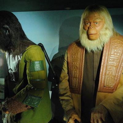 TWiP 63: Plasmodium of the apes