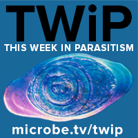 TWiP 138: Telmophages and the skin parasite landscape