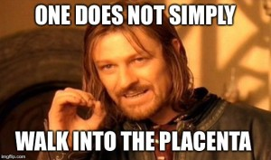 One does not simply walk into the placenta