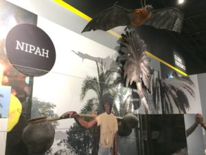 Nipah at Outbreak Exhibit