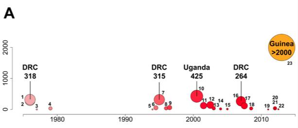 Ebola virus disease outbreaks