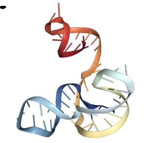 subgenomic flavivirus RNA