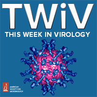 TWiV 733: COVID-19 clinical update #54 with Dr. Daniel Griffin