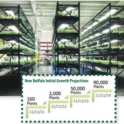 Urban Agriculture 9: Green Spirit Farms