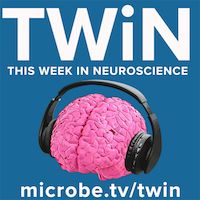 TWiN 12: A gene for short-term memory
